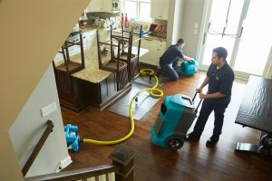 Water Damage Restoration Services Roseville CA